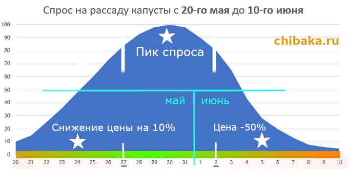 Изображение - Как вырастить цветную капусту на продажу %D0%91%D0%B8%D0%B7%D0%BD%D0%B5%D1%81-%D0%BD%D0%B0-%D1%80%D0%B0%D1%81%D1%81%D0%B0%D0%B4%D0%B5-%D0%BA%D0%B0%D0%BF%D1%83%D1%81%D1%82%D1%8B