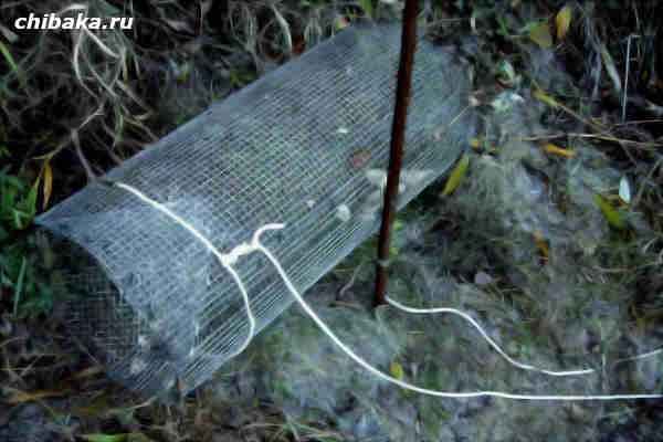 Корчажка для ловли рыбы