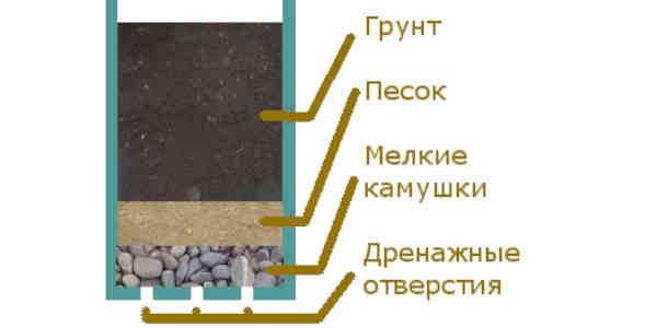 Почва для герани