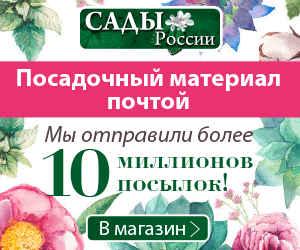 Интернет-магазин семян
