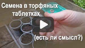 Семена в торфяных таблетках (видео)