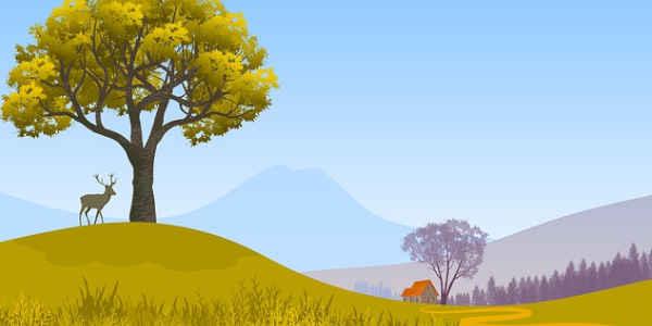 Деревенские просторы